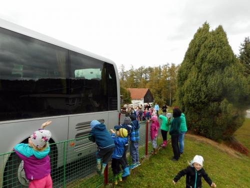 Podzimní setkání v MŠ Bohumilice-10.10. návštěva freyungských dětí