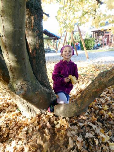 ekologie-stromoví skřítci (27)