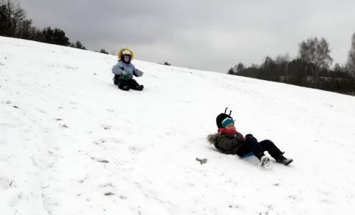 Zvířátka na sněhu - Masopust 2018