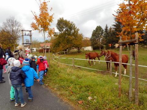 podzimní setkání 2018 v Bohumilicích (21)