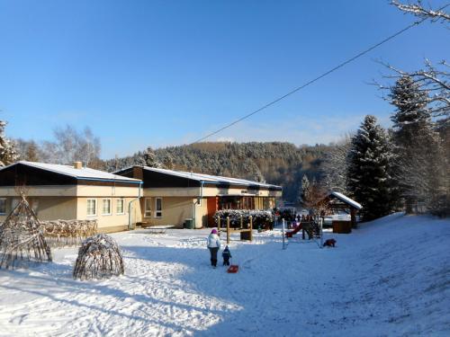 sněhová vánoční nadílka (12)
